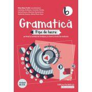 Gramatica-Fise de lucru pentru clasa VI