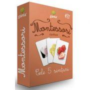 Carti de joc Montessori-Cele 5 simturi