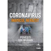 Coronavirus 2020: Inamicul nevazut (Povesti din Wuhan)