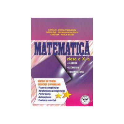 Matematica clasa a X - a : algebra , geometrie , trigonometrie ; sinteze de teorie , exercitii si probleme