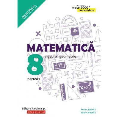 Matematica. Algebra, geometrie. Clasa a VIII-a. Consolidare. Partea I