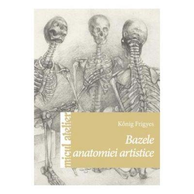 Bazele anatomiei artistice